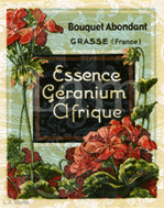 Botanicals And French Perfume